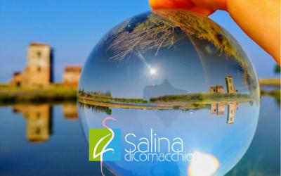 Visitare la Salina di Comacchio in settembre: un'occasione da non perdere
